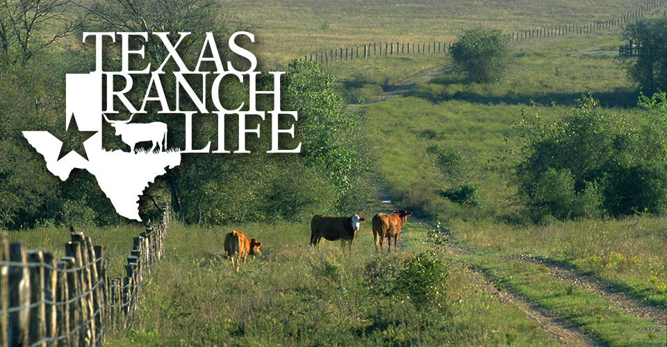 Post – Test – Texas Ranch Life
