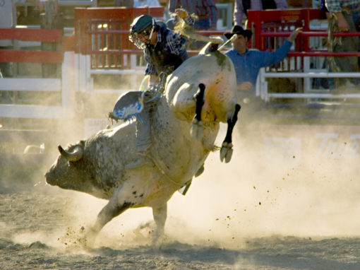 Old Fashioned Rodeos